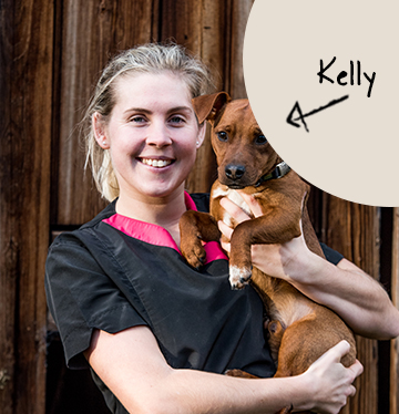 Kelly's team member picture