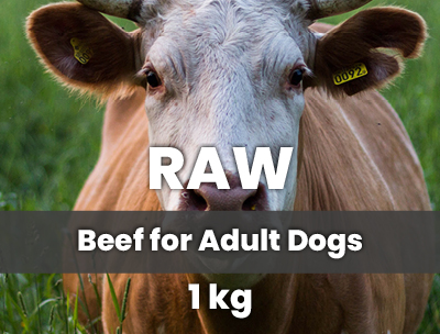 raw food hover3