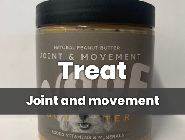 joint and movement
